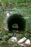Каменный тоннель в древесинах 2 & x28; vertical& x29; Стоковая Фотография