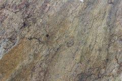 Каменный утес Стоковые Фотографии RF