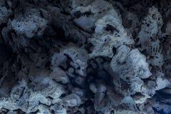 Каменный цветок Стоковое Изображение RF