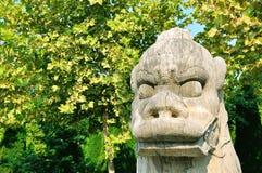Каменный любимчик Стоковая Фотография
