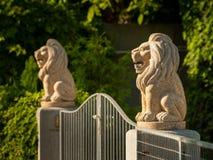 2 каменных льва на штендерах защищая вход сада Стоковое Изображение RF