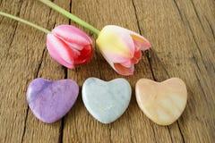 3 каменных сердца и 2 тюльпана Стоковые Изображения