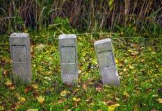 3 каменных столбца который вставляют из зеленой травы Стоковые Изображения RF