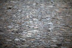 камень выстилки Стоковая Фотография RF