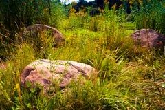 Камень в Беларуси Стоковые Изображения
