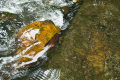Камень в воде Стоковые Изображения RF