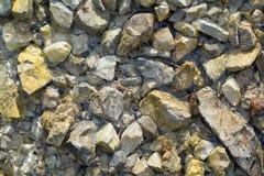 Камень в реке стоковая фотография rf