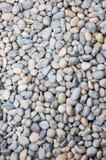 Камень в саде стоковые фотографии rf