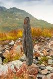 Камень в чувствительном балансе стоковое фото