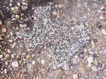 Камень гравия Техаса Стоковые Фотографии RF