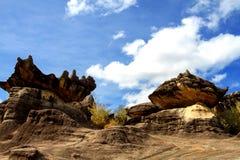 Камень 2 грибов Стоковые Фото