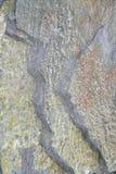 камень деталей стоковые фотографии rf