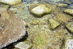 Камень и коралл под ясным морем на острове Chang Koh в Таиланде Стоковое фото RF