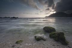 Камень и риф на пляже Стоковые Изображения RF
