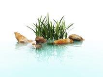 Камень и трава Стоковое Изображение RF