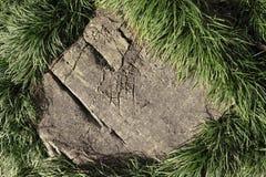 Камень и трава стоковые фото