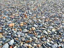 Камень камешка Стоковое Изображение RF