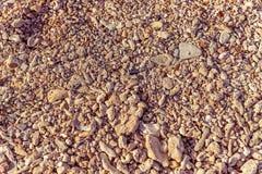 Камень коралла с винтажным стилем стоковое фото rf