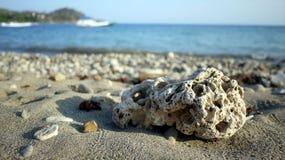 Камень коралла и пляж Стоковые Изображения RF