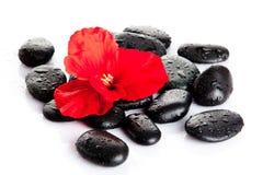 Камень курорта Дзэн камня спы камушков медицинского соревнования принципиальной схемы Стоковое Изображение