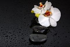 Камень курорта Стоковое Изображение RF