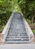 камень лестниц парка Стоковые Фото