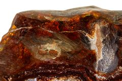 Камень макроса опаловый минеральный в утесе на белой предпосылке стоковые изображения