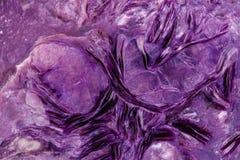 Камень минеральное Charoite макроса на белой предпосылке стоковое фото