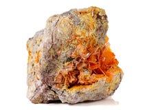 Камень минеральное Wulfenite макроса на белой предпосылке стоковые фотографии rf
