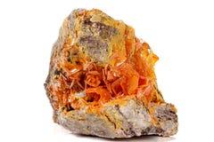 Камень минеральное Wulfenite макроса на белой предпосылке стоковые изображения rf