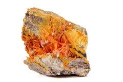 Камень минеральное Wulfenite макроса на белой предпосылке стоковая фотография rf