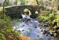 камень моста старый Стоковое фото RF