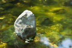 Камень на воде Стоковое фото RF