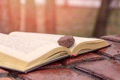 Камень на книге Стоковые Фото