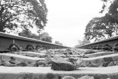 Камень на пути рельса на утре с космосом экземпляра Стоковое Фото