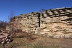 камень пейзажа пущи Стоковая Фотография