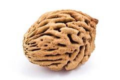 камень персика Стоковая Фотография RF