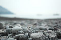 камень пляжа Стоковая Фотография RF