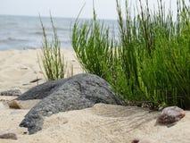 Камень погрузил в воду в песке на пляже Стоковое фото RF