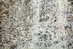камень предпосылки цветастый естественный Стоковая Фотография RF