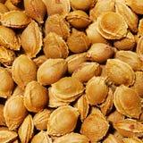 камень предпосылки абрикоса Стоковые Фотографии RF
