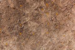 камень предпосылки детальный реальный очень Детальный конец вверх каменной текстуры как назад Стоковая Фотография RF