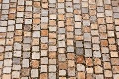 камень путя cobble Стоковое Изображение