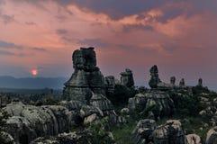 камень пущи фарфора Стоковые Фото