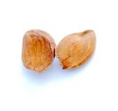 Камень плодоовощ персика изолированный на белизне Стоковое фото RF