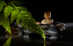 камень расположения Стоковые Изображения RF