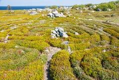 камень России лабиринта островов solovetsky Стоковые Фото