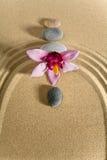 камень сада floves Стоковая Фотография