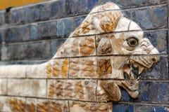 камень сброса nanjing льва фарфора Стоковое Фото