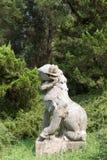 камень сброса nanjing льва фарфора Стоковая Фотография